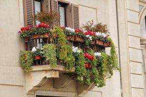 akompagntoit-balcon fleuri